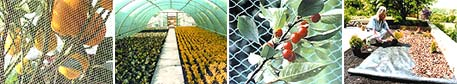 Horticultural Textiles......the horticultural choice for professional growers