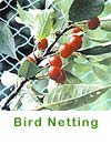 Bird Netting - click here